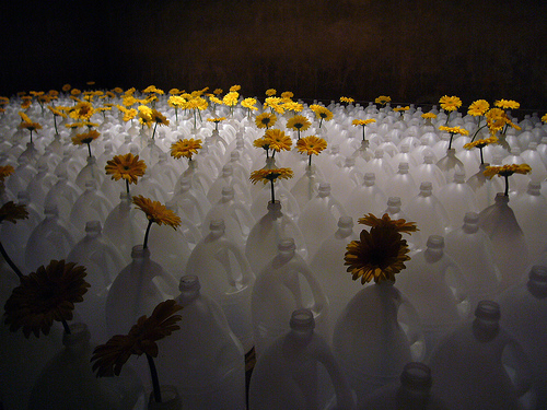 Temps-de-flors-Girona