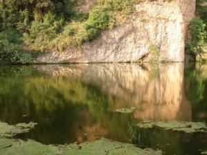 riu-fluvia