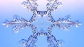 vista previa del artículo Por fin llega el invierno