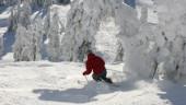 vista previa del artículo El temporal ayuda a las estaciones de esquí del Pirineo
