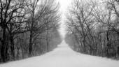 vista previa del artículo Temporal de nieve obliga a cortar carreteras