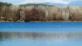vista previa del artículo Nuevo pequeño lago en Banyoles